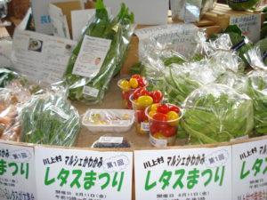 マルシェかわかみ店内の野菜たち